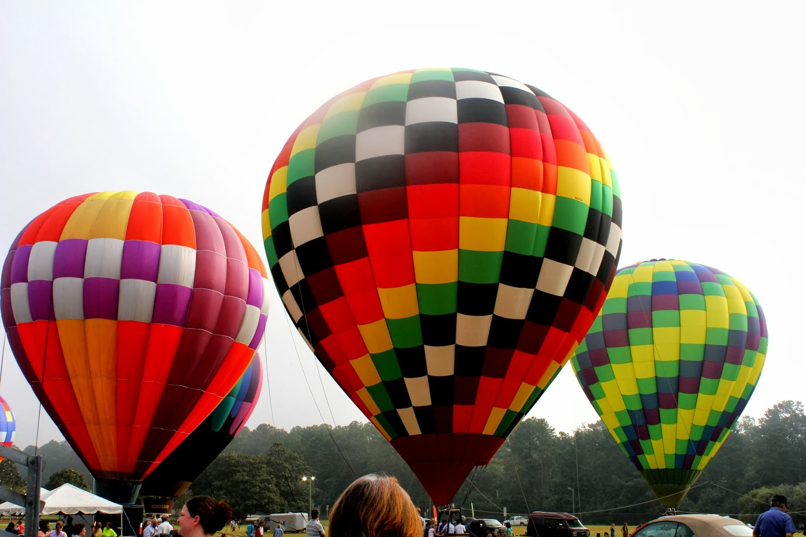 Callaway Gardens Hot Air Balloon 2016 Garden Ftempo