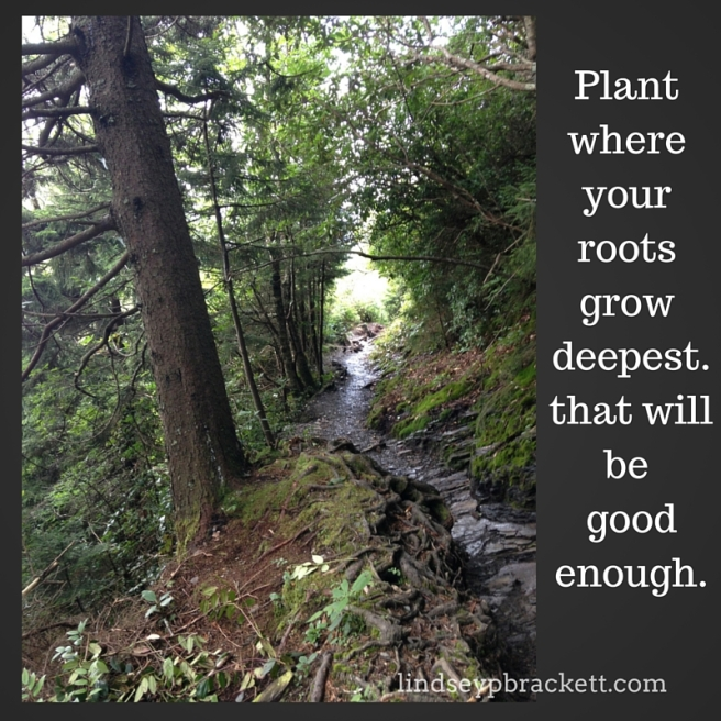 Plant where your roots grow deepest.that willbe goodenough.